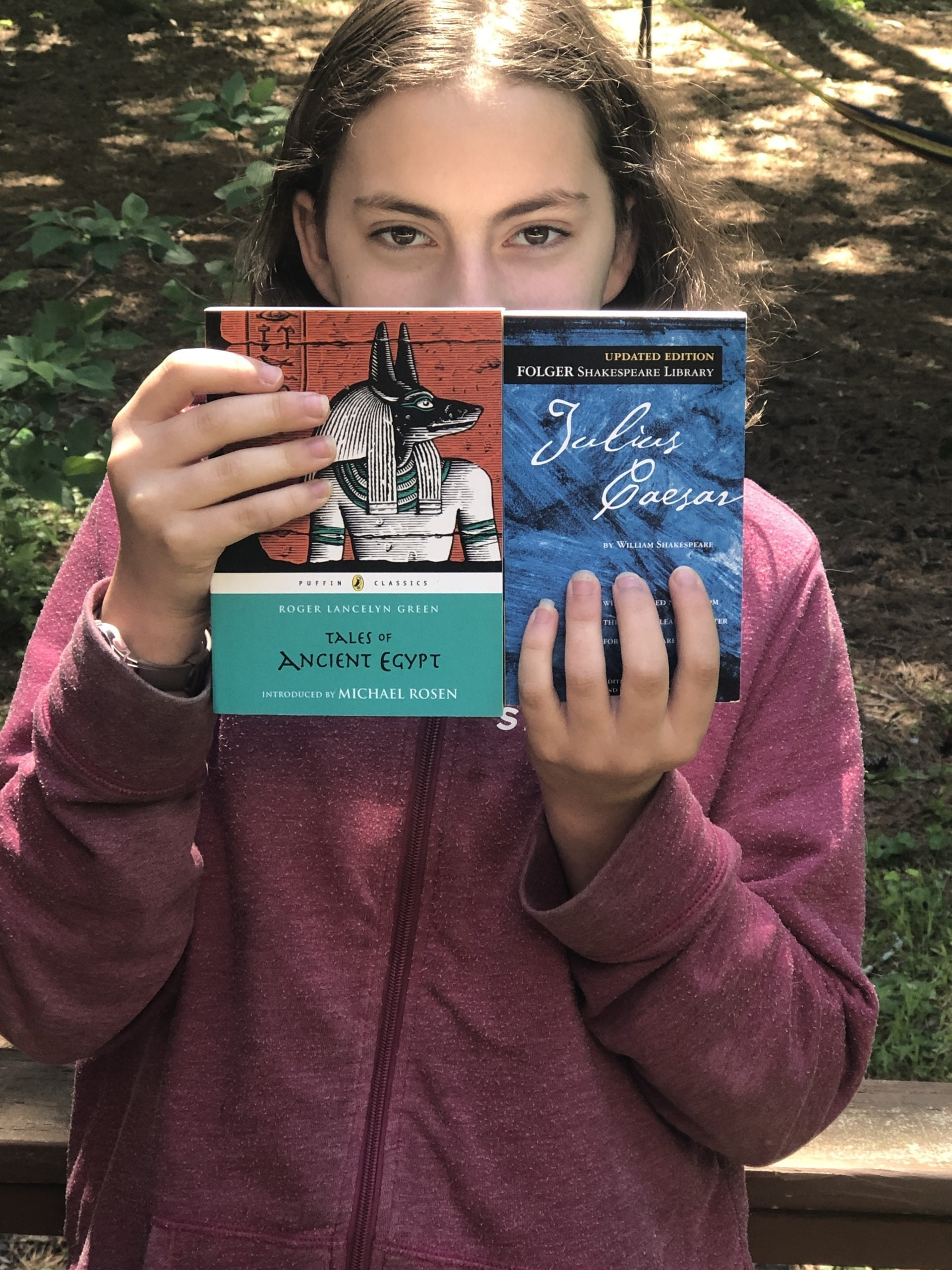 High school is a great time for kids to dive deeper into the story of history. Literature curriculum which is history based is highly engaging.
